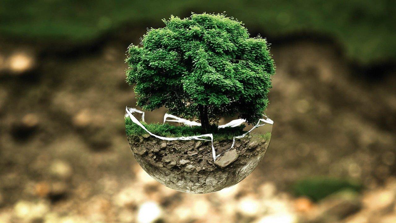 environmental protection, environment, the atmosphere-683437.jpg